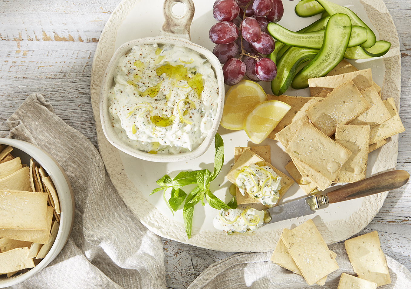 WEB only LavoshBites CO SS with Tzatziki Dip platter
